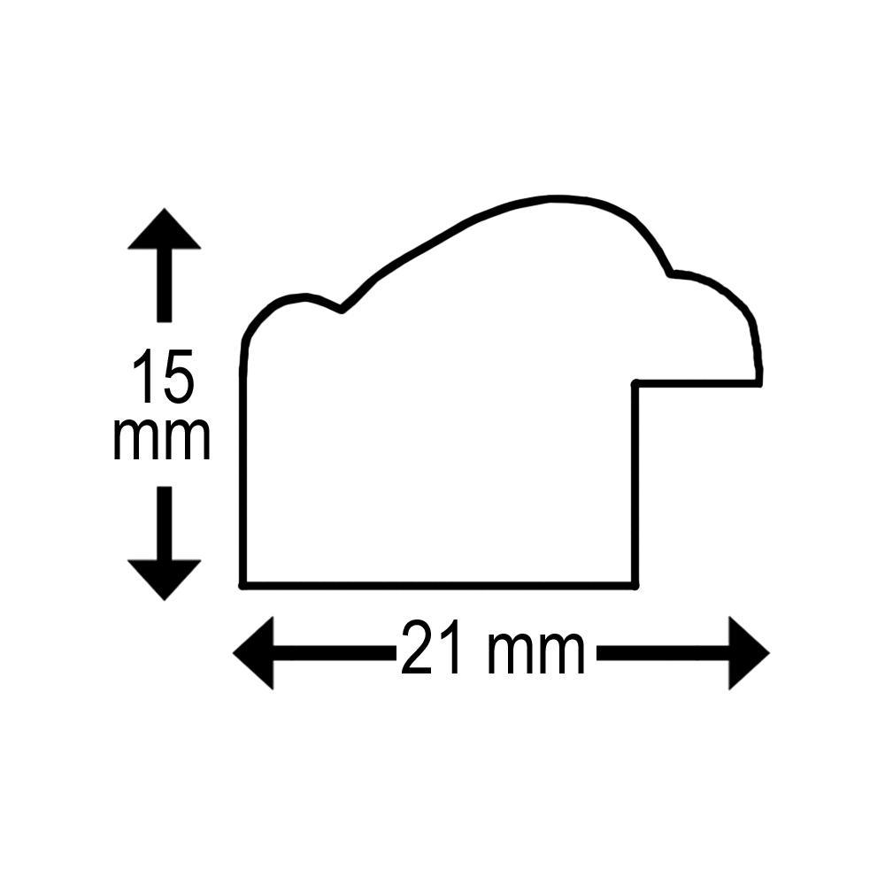 Icar DRI S10 13×18 hellbraun